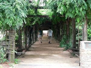 Coker Arboretum Chapel Hill Carrboro Nc Localwiki