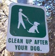 Ace Dog Grooming