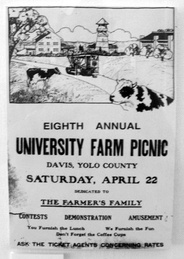 origins of the word picnic