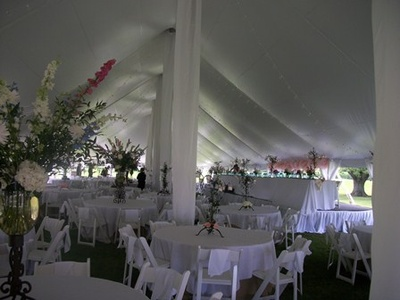 Party palace wedding event rentals bloomington normal localwiki party palace outdoor wedding tent rentals is a newer business in the twin cities but is growing rapidly due to their great service elegant products and junglespirit Image collections