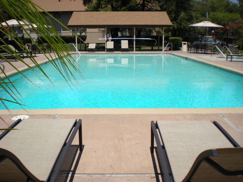 "Information about ""poolside view.jpg"" on Cranbrook Apartments"