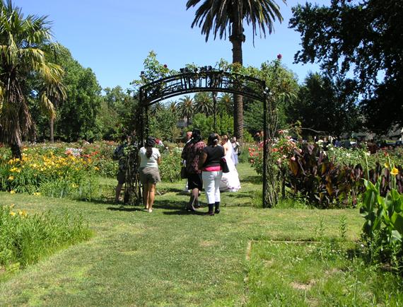 Download Rose Garden Pathways